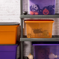 Thanksgiving and Halloween Storage